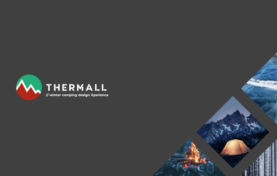 portfolio_thermall_1